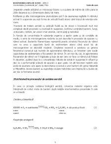 Bioepurarea Apelor Reziduale - Pagina 5