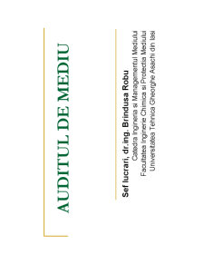 Auditul de Mediu - Pagina 1