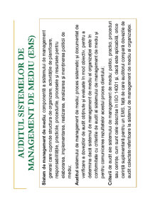 Auditul de Mediu - Pagina 3