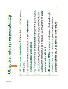 Auditul de Mediu - Pagina 5