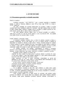 Contabilitatea Stocurilor - Practica de Specialitate in Domeniul Contabilitatii - Pagina 3