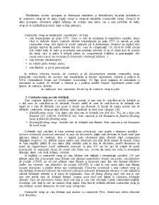 Contractele SWAP - Pagina 3