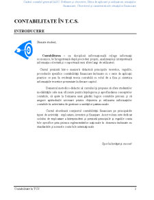 Contabilitate în TCS - Pagina 2