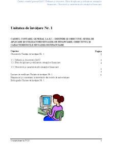 Contabilitate în TCS - Pagina 3