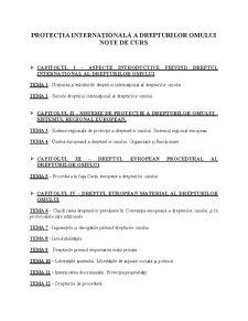 Dreptul Internațional al Drepturilor Omului - Pagina 1