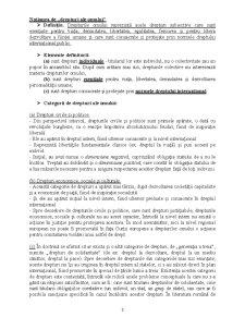 Dreptul Internațional al Drepturilor Omului - Pagina 3