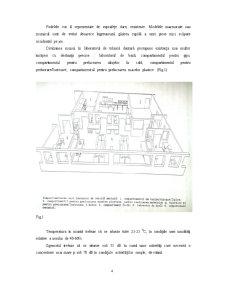 Infiintarea unui Laborator de Tehnica Dentara - Pagina 4