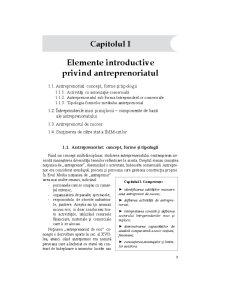 Elemente Introductive privind Antreprenoriatul - Pagina 1