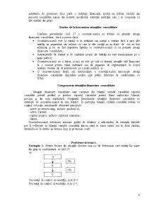 Analiza Rapoartelor Consolidate - Pagina 4
