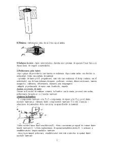 PSP 1 - Pagina 2