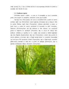 Eutrofizarea si Influenta Lor asupra Organismelor - Pagina 5