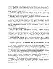 Principii si Reguli ale Organizarii si Conducerii Contabilitatii in Institutiile Publice - Pagina 3