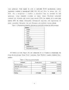 Diagnostic Financiar Contabil al SC Fabrica de Scule Rasnov SA - Pagina 4