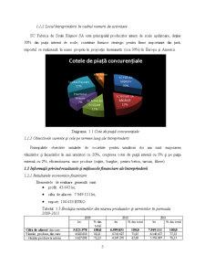 Diagnostic Financiar Contabil al SC Fabrica de Scule Rasnov SA - Pagina 5