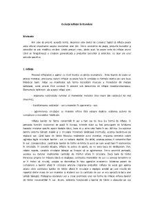 Evoluția Inflației în România - Pagina 2