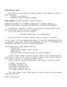 Realizarea Situatiilor Financiare Anuale - Pagina 1