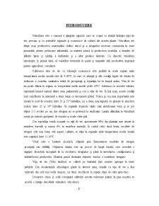 Cercetari privind Cheltuielile Necesare Infiintarii unei Plantatii de Vita de Vie - Pagina 2