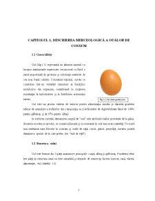 Metode de Conservare la Oua - Pagina 3