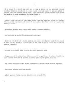 IPA - Pagina 2