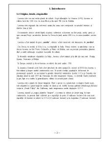 Fiziologia Animala - Lucerna - Pagina 3