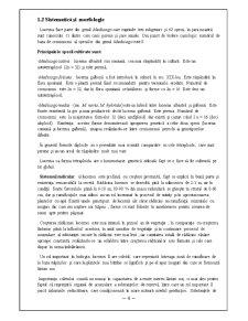 Fiziologia Animala - Lucerna - Pagina 4
