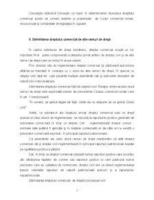 Considerații Generale asupra Dreptului Afacerilor - Pagina 3