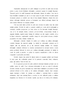 Probele de Audit - Pagina 1