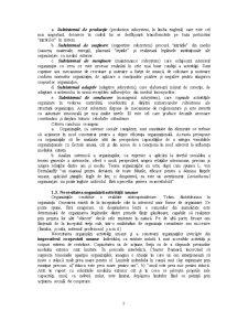 Cultură și Comportament Organizațional - Pagina 3