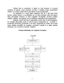 Conservarea Fructelor și Legumelor prin Congelare - Pagina 5
