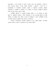 Perspectivele Dezvoltării Turismului - Pagina 5