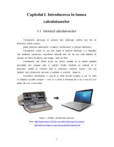 Infracționalitatea Informatică - Protecția Consumatorului - Pagina 3