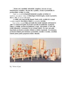 Activitatea de Productie in Unitatea de Morarit si Panificatie - Pagina 2