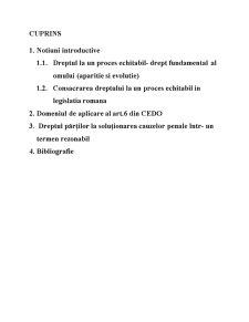 Dreptul la un Proces Echitabil - Pagina 2