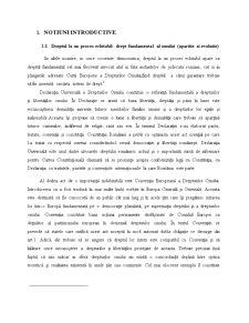 Dreptul la un Proces Echitabil - Pagina 3