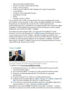 Institutiile Uniunii Europene - Pagina 5
