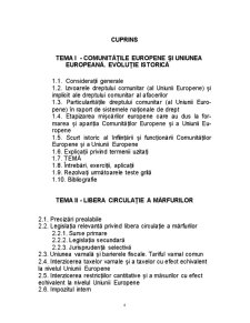 Dreptul Material al UE - Pagina 4