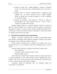 Suprastructura Drumului - Pagina 5