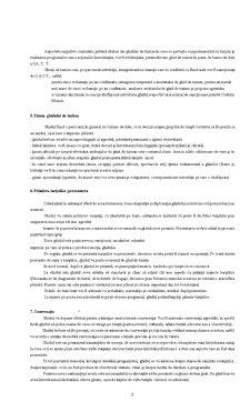 Tehnica de Ghid - Pagina 3