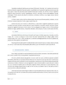 Amenajare Turistica in Comuna Bobota - Pagina 4