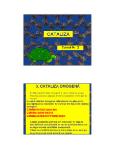 Cataliza - Curs 2 - Pagina 1