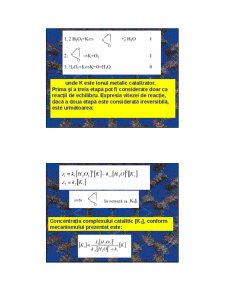 Cataliza - Curs 3 - Pagina 2