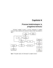 Biotehnologie Generala - Pagina 1