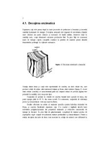 Biotehnologie Generala - Pagina 2