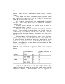 Biotehnologie Generala - Pagina 4