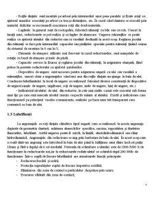 Transmisie Mecanică cu Reductor și Curele Trapezoidale Înguste - Pagina 5