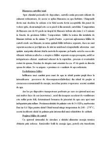 Valoare de Intrebuintare - Chipsuri de Cartofi - Pagina 5