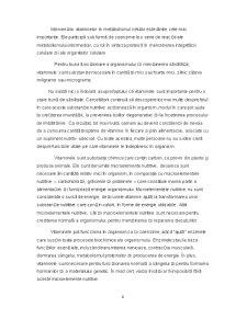 Vitaminele B12, B5, B6 - Pagina 4