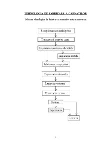 Ambalaje in Industria Agroalimentara - Carnatii - Pagina 2