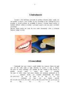 Structura Portelan Dentar - Pagina 3