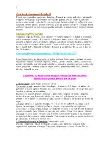 Lăptișorul de Matcă - Pagina 5